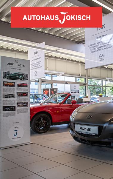 Raatz_Automobil-a5